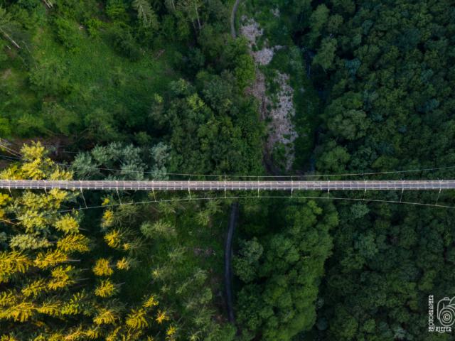 Hängeseilbrücke C